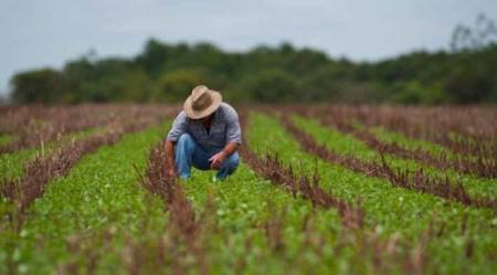 Los agrónomos 2.0: Cambios que impulso el nuevo contexto y que marcarán nuevas formas de trabajo en el sector