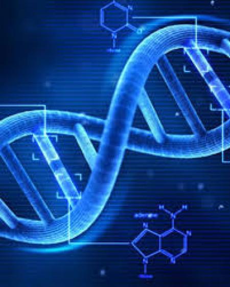 La UNNOBA lanza el Doctorado en Mejoramiento Genético.