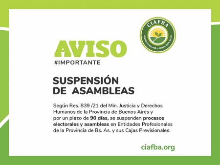 Suspensión de procesos electorales y asambleas